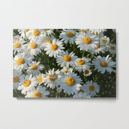 Summer mood Metal Print