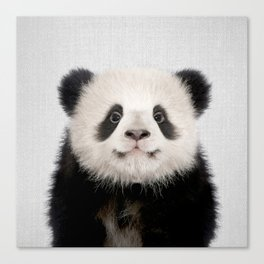Panda Bear - Colorful Canvas Print
