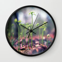 Ferns in the Making Wall Clock