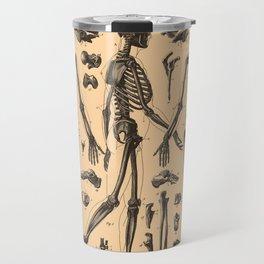 Vintage Human Skeleton Anatomy Diagram (1907) Travel Mug