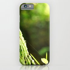 Moss Slim Case iPhone 6s