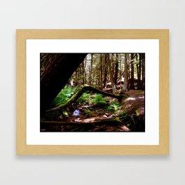 Crooked Log Framed Art Print