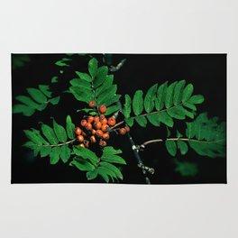Rowan berry 1 Rug