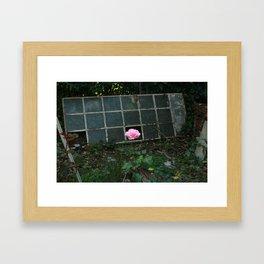 Beauty Fragment Framed Art Print