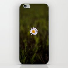 I've been longing for, daisies to push through the floor iPhone & iPod Skin