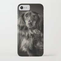 waldo iPhone & iPod Cases featuring Family Dog - Waldo the Shy Dog by Isaloha Photography
