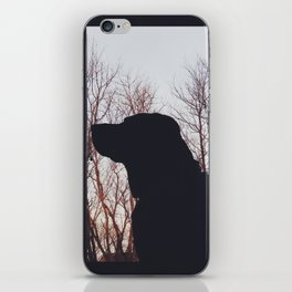 Silhouette-a of a Dog iPhone Skin