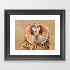 OWLIFY Framed Art Print