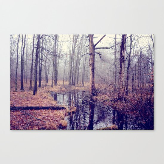 tread softly Canvas Print