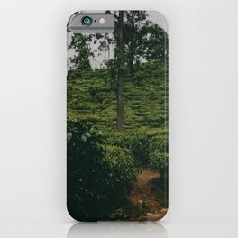 Sri Lankan tea plantation iPhone Case