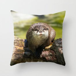 Otter on A Tree Trunk Throw Pillow
