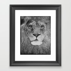 Stare Framed Art Print
