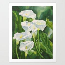 Calla Lilies Vertical Design Art Print