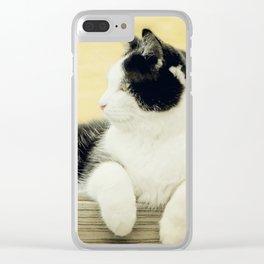 Suzy Copper Sun - Tuxedo Cat Clear iPhone Case