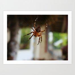Charlies Web Art Print