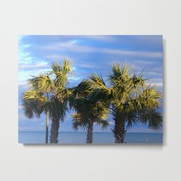 3 Little Palm Trees Metal Print