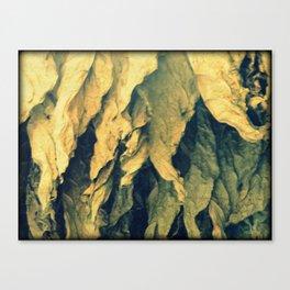 Tobacco leafs Canvas Print