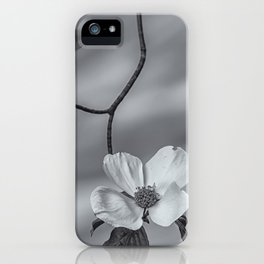 Blooming Dogwood bw iPhone Case