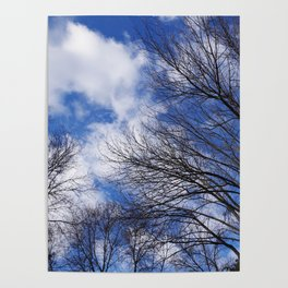 Reaching for the clouds Poster