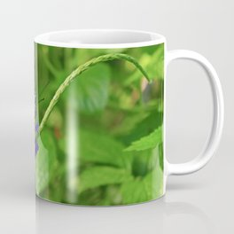 A Dangling Dalliance Coffee Mug