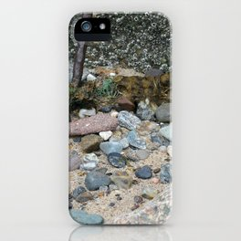 Barnicles iPhone Case