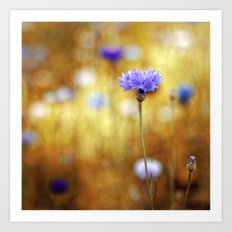 Belonging to Summer. Art Print