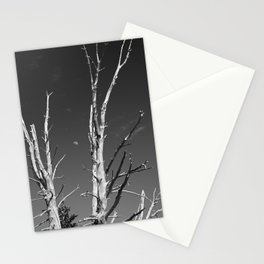 Framed Stationery Cards