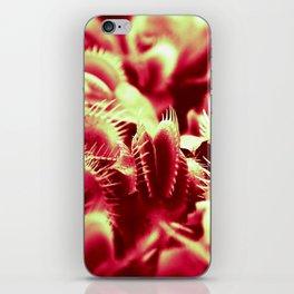 Carnivorous beauty iPhone Skin