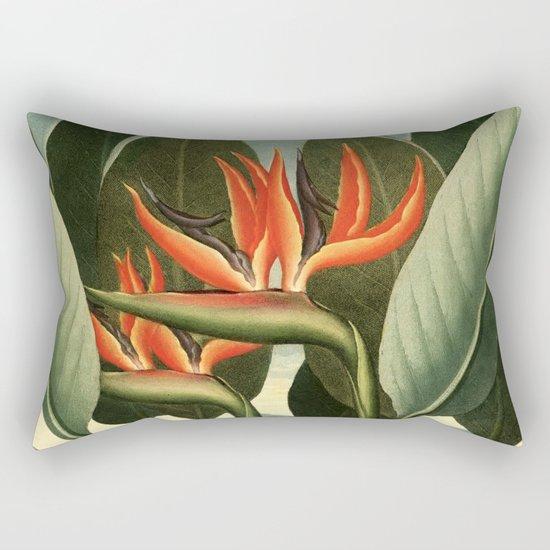 Birds of Paradise : Temple of Flora Rectangular Pillow