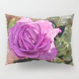 Sardinian Rose Poetry Pillow Sham