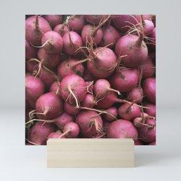 Farmer's Market Turnips Mini Art Print