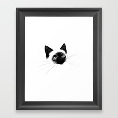 Curious Siamese Kitten Framed Art Print