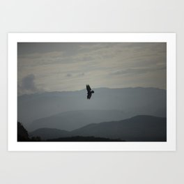 Flying in the sky Art Print