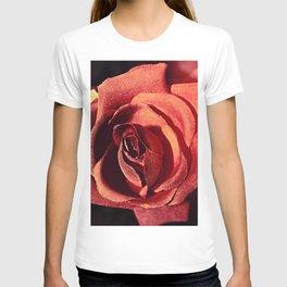 Vintage Rose023 T-shirt