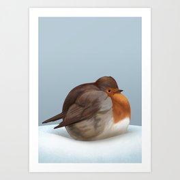 Satisfied robin Art Print