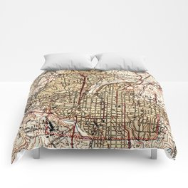 Vintage Map of Raleigh North Carolina (1940) Comforters