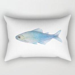 Blue Tetra Boehlkea Fredcochui Rectangular Pillow