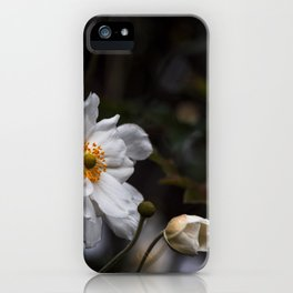 unterwegs_1284 iPhone Case