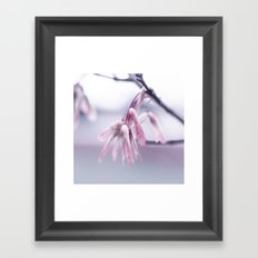 Signs of Spring Framed Art Print