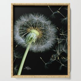 Dandelion Seeds Blowing in the Wind, Scanography Serving Tray