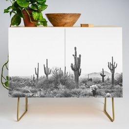 DESERT / Scottsdale, Arizona Credenza