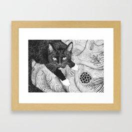 cat in black and white III Framed Art Print
