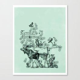 Natural History Canvas Print