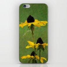 Brown Eyed Susans iPhone & iPod Skin