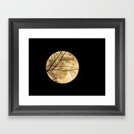 Shadows on the Moon Framed Art Print