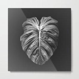 Monstera Deliciosa Black and White Metal Print