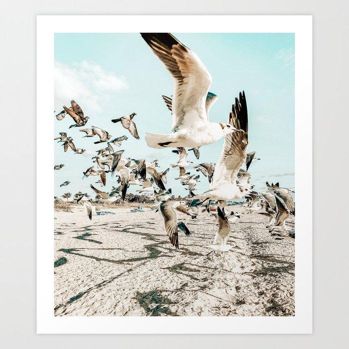 Seagulls #digitalart #animaprint Art Print