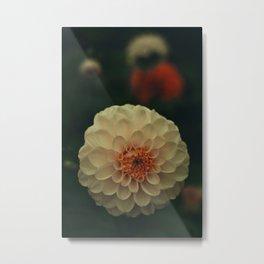 Mystical Botanical Metal Print