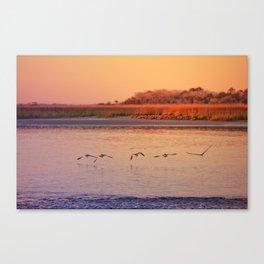 Seabirds at Sunset Canvas Print