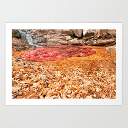 With Love From Maryland Art Print